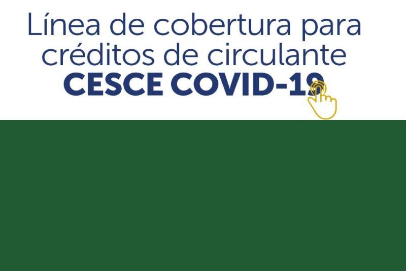 La línea CESCE-COVID19 moviliza créditos bancarios por valor de 339 millones