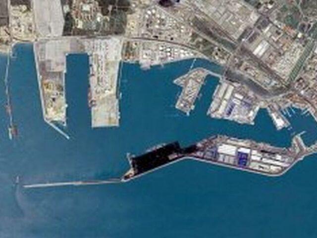 Puerto de Tarragona triplica el tráfico de ganado vivo en el 1T