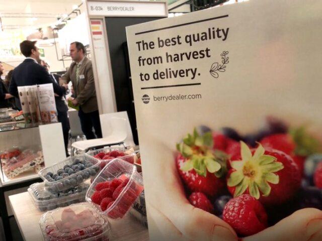 Andalucía lidera las exportaciones de frutos rojos en el 1T de 2020