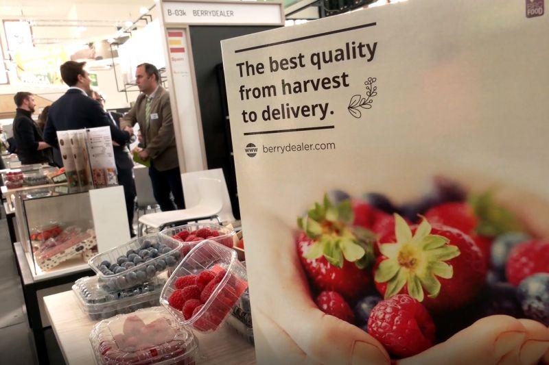 andalucia-lidera-las-exportaciones-de-frutos-rojos
