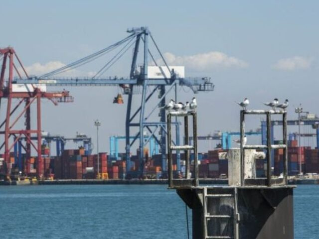 La exportación en el sector alimentario podría caer hasta un 11% en 2020