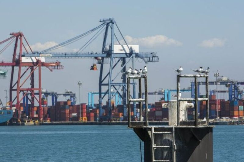 exportaciones-en-el-sector-de alimentacion