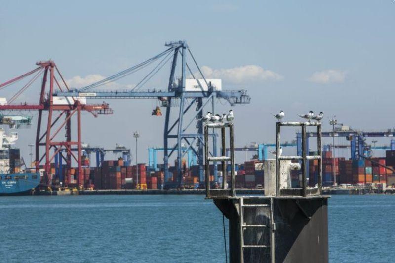 trafico-de-mercancias-remonta-en-agosto