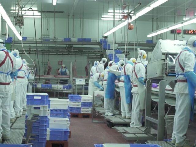 Las exportaciones del sector porcino español logran en 2020 un récord histórico