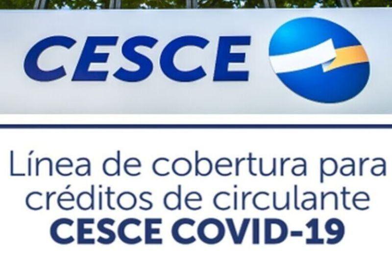 cesce-linea-empresas-internacionalizadas