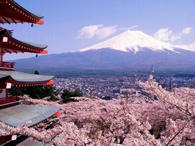 Intereses y perspectivas de futuro de las empresas españolas en Japón