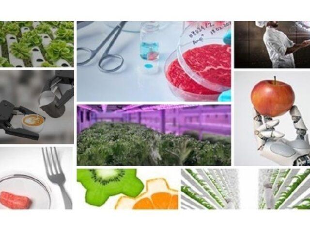 ICEX impulsa la internacionalización del sector FoodTech español