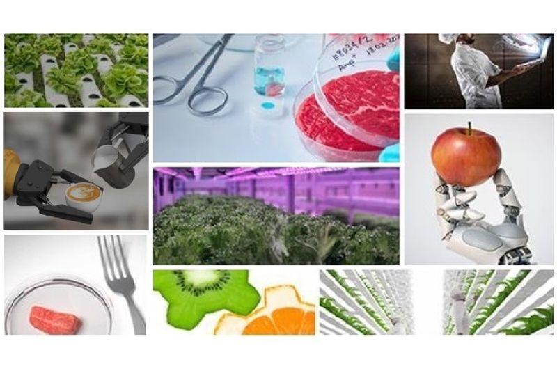 internacionalizacion-sector-foodtech