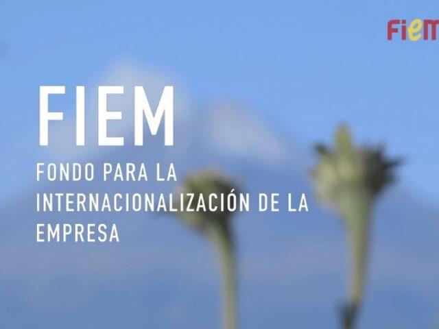 50 M€ para fomentar la internacionalización de las empresas